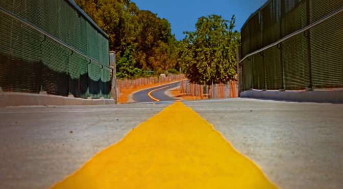 Os caminhos da febre amarela no mundo