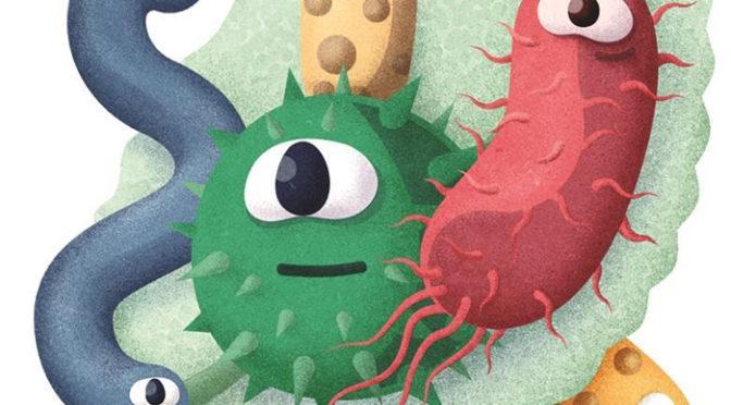 O microbioma das plantas: o poder do exército invisível